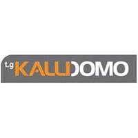 thumb_kallidomo-logo